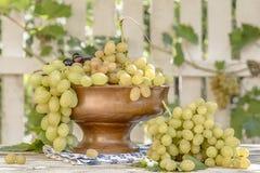 Зеленый и черный свежий пук виноградин в деревянном шаре Стоковые Фотографии RF