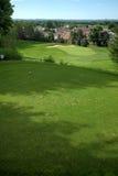 зеленый класть Стоковая Фотография RF