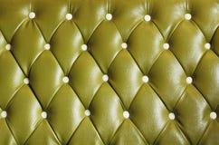 зеленый кожаный сбор винограда картины Стоковые Изображения