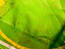 Зеленый конец предпосылки текстуры хлама пакета вверх Стоковые Фотографии RF