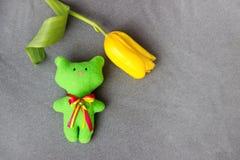 Зеленый кот игрушки сделанный ватки handmade и желтого тюльпана Стоковая Фотография RF