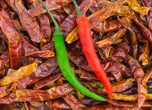 Зеленый красный свежий стручок chili на предпосылке сухого длинного перца Стоковая Фотография