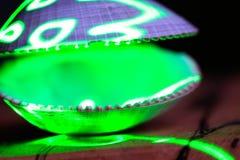 Зеленый лазер освещает открытую раковину clam стоковые фотографии rf