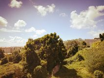 Зеленый ландшафт взгляда стоковые изображения rf