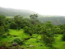 зеленый ландшафт уникально стоковая фотография rf