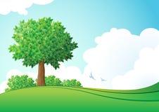 Зеленый ландшафт. Иллюстрация штока