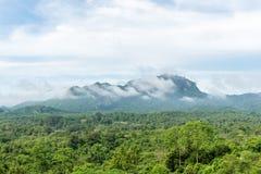 Зеленый лес на ландшафте горной цепи с синью и облачным небом стоковая фотография rf