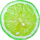 зеленый ломтик известки стоковое фото rf