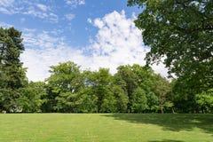 Зеленый луг в парке города Стоковое Изображение RF