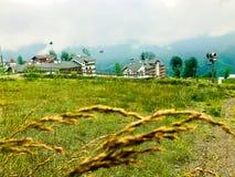 Зеленый луг в русском ландшафте сельской местности стоковые фото