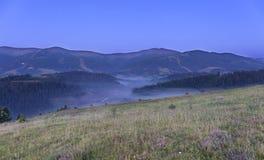 Зеленый луг и серый курчавый туман на холме на заднем плане прикарпатских гор в раннем утре Стоковое фото RF