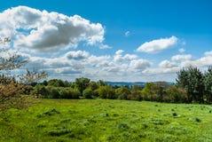 Зеленый луг рядом с Camino de Сантьяго в Испании стоковое фото rf