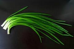 Зеленый лук на черной предпосылке стоковое фото rf