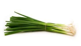 зеленый лук Стоковые Фотографии RF