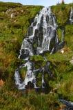 Зеленый мох растя на утесах водопада Стоковые Фото