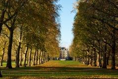 зеленый парк к путю Стоковое Изображение RF