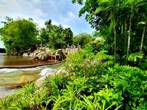 Зеленый парк около воды стоковая фотография