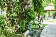 Зеленый парк стенда публично, который нужно сидеть Стоковая Фотография