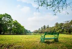 Зеленый парк стенда публично Стоковое Изображение RF