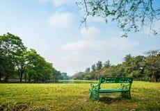 Зеленый парк стенда публично Стоковые Фотографии RF