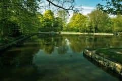 зеленый пейзаж Стоковые Изображения