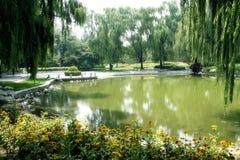 зеленый пейзаж Стоковая Фотография