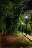Зеленый переулок в городе стоковые изображения rf