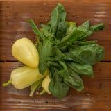 Зеленый перец с базиликом Стоковые Фото