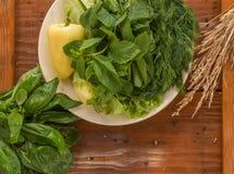 Зеленый перец с зеленым салатом и базиликом Стоковое Изображение