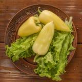Зеленый перец с зеленым салатом Стоковая Фотография
