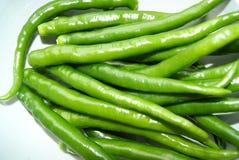 зеленый перец Стоковые Изображения