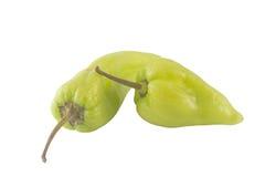 зеленый перец Стоковое Изображение