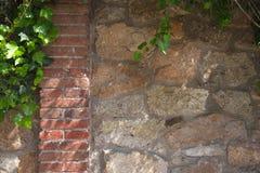 Зеленый плющ дальше stonewall стоковое изображение