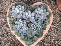 Зеленый подарок дня ` s валентинки для любовников земли Стоковое Изображение RF