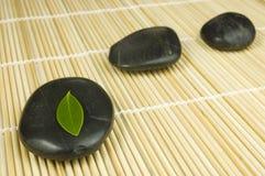 зеленый рядок камушков листьев Стоковые Фото