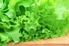 зеленый салат плиты деревянный Стоковая Фотография