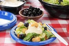 зеленый салат плиты Стоковое фото RF