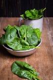 Зеленый свежий шпинат стоковые изображения rf