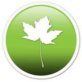 зеленый символ Стоковое фото RF
