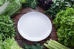 Зеленый, сочный салат выходит в ассортимент с белой плитой в разбивочном взгляде сверху стоковое фото