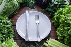 Зеленый, сочный салат выходит в ассортимент с вилкой и нож на белую плиту в разбивочном взгляд сверху стоковые изображения