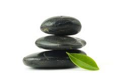 зеленый стог камушков листьев стоковые фотографии rf