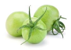 зеленый сырцовый томат стоковые фото