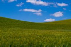 зеленый холм Стоковая Фотография RF