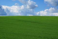 зеленый холм Стоковое Изображение RF