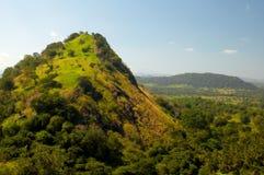 зеленый холм стоковые фотографии rf