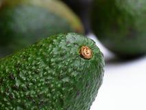 зеленый цвет авокадоа Стоковые Фотографии RF