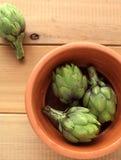 зеленый цвет артишока свежий Стоковое Изображение
