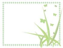 зеленый цвет бабочки предпосылки Стоковое Изображение RF