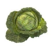 зеленый цвет большой капусты французский Стоковые Изображения
